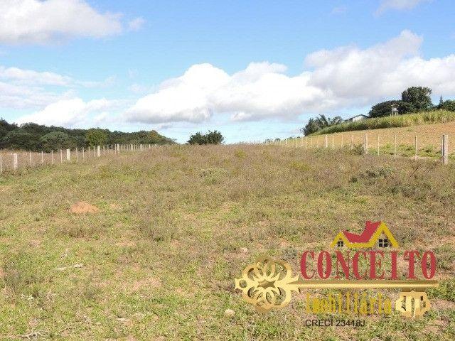 T.O.R.R.O 3,5 hectares no centro de Águas Claras por apenas R$ 300 mil - confira - Foto 3