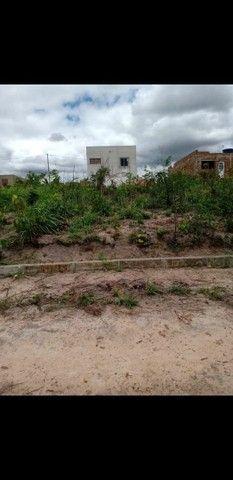 Terrenos no Loteamento Nova Pindorama Tracunhaém PE