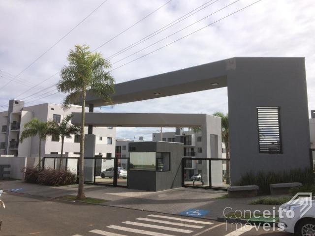 Apartamento para alugar com 1 dormitórios em Jardim carvalho, Ponta grossa cod:393113.001 - Foto 3