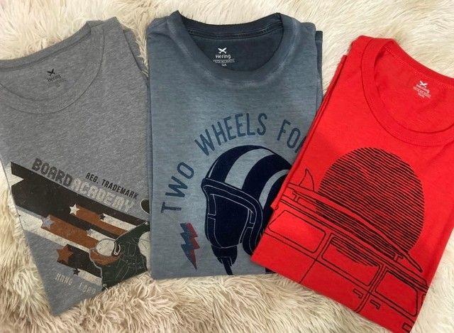 Lote de Camisas de Marca Usadas - TAM G