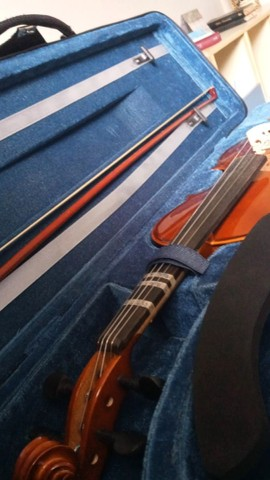 Violino Eagle VE 144  - Foto 2