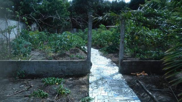 Excelente chácara medindo 26x133 em Atalaia - Foto 10