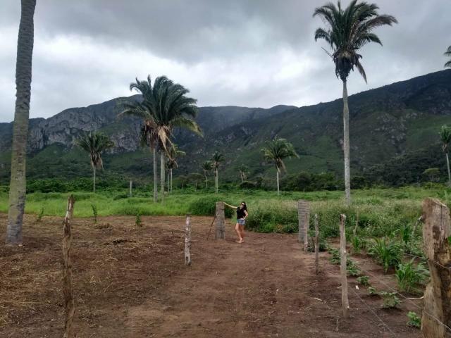 Terreno em itaitu/jacobina-OPORTUNIDADE! - Foto 8