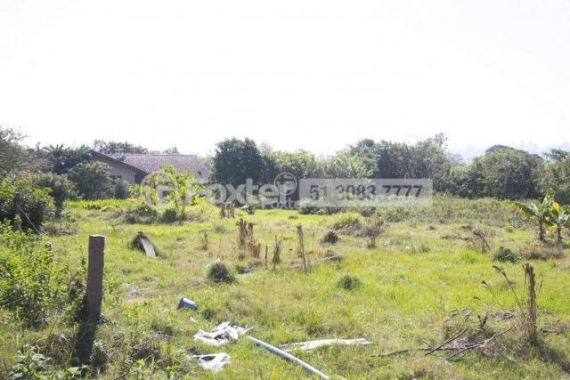Terreno à venda em Morro santana, Porto alegre cod:113388 - Foto 3