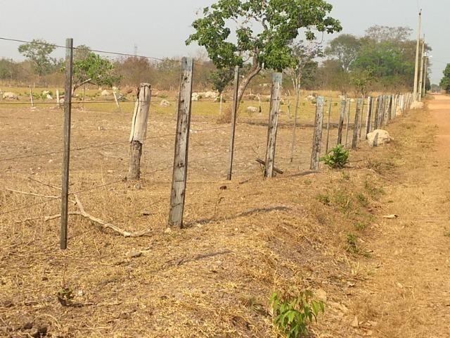 Chácara 2.5 ha, linha 16 cinturão verde - Foto 5