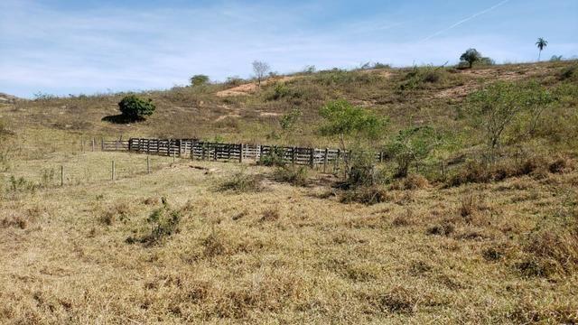 Fazenda 42 Alqueires em Campanário/MG, região de Governador Valadares/MG - Foto 11