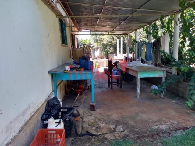 Sítio à venda com 2 dormitórios em Zona rural, Luís antônio cod:V17521 - Foto 7