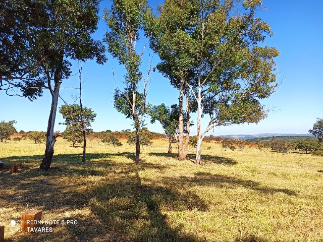 Lindos Terrenos Rurais em Jaboticatubas - Financio - Foto 5