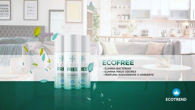 Eco Free- Spray - Seu Ar Mais Limpo - Foto 2