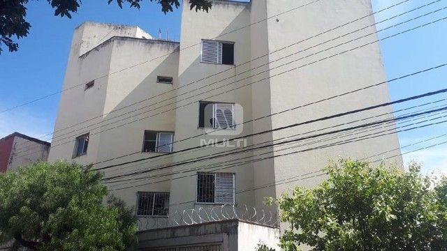 Apartamento para alugar com 3 dormitórios em Saraiva, Uberlândia cod:L13428 - Foto 7