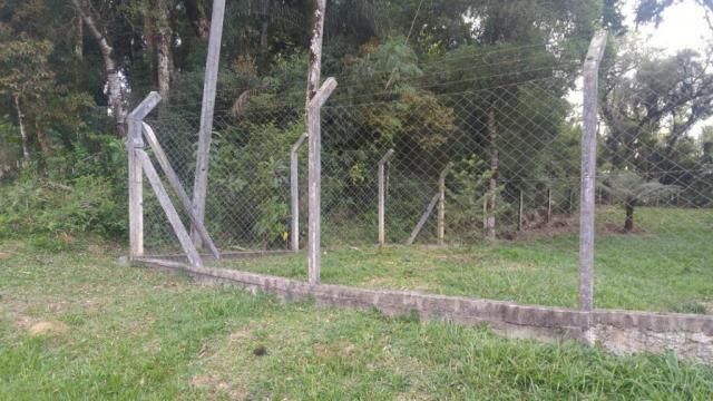 Chácara à venda em Borda do campo, São josé dos pinhais cod:69291 - Foto 3
