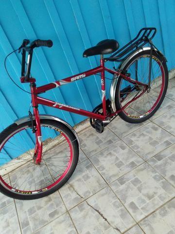 Bicicleta Terra Forte