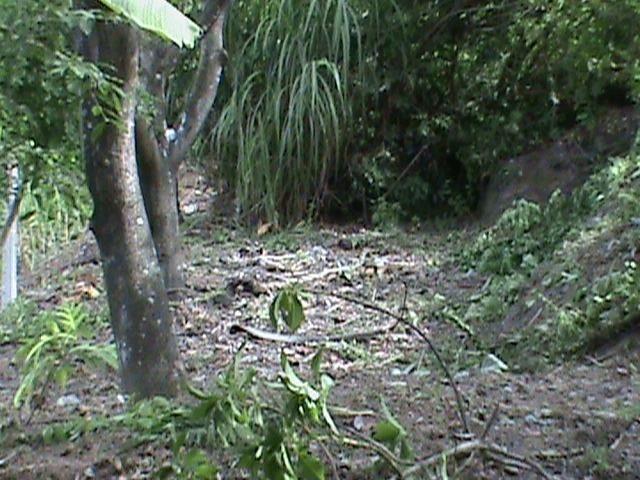 Sítio com 24x35 = 840m2, Vendo ou Troco , Em Tejucupapo, Goiana-PE - Foto 11