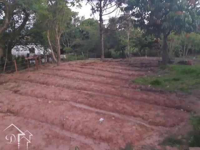 Casa à venda com 3 dormitórios em Pinheiro machado, Santa maria cod:10055 - Foto 14