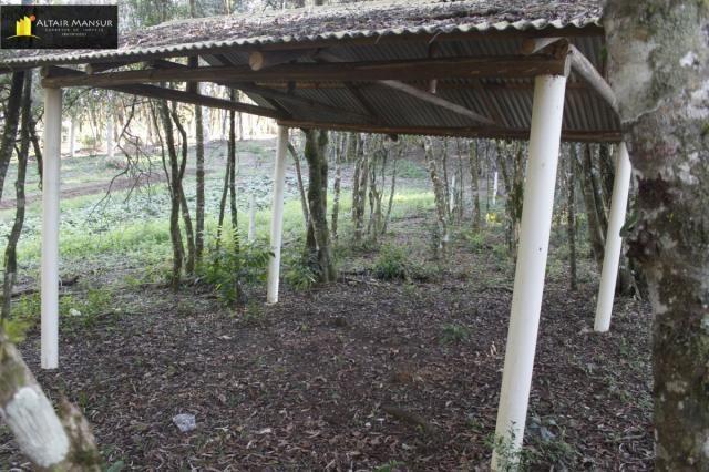 Terreno para Venda em Lagoa Tijucas do Sul-PR - Foto 10