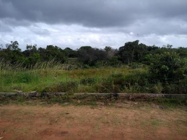 Terreno para alugar, 7200 m² por R$ 6.800,00/mês - Catu de Abrantes - Camaçari/BA - Foto 2
