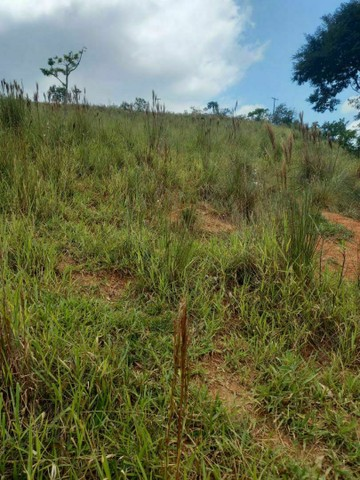 Terrenos de 5000mtrs na linda região de Igaratá (P.M) - Foto 3