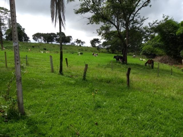 Fazenda 16,5 Alq - 50km de Goiânia - Hidrolândia - Entrada exclusiva - a 4 km da Rodovia - Foto 18