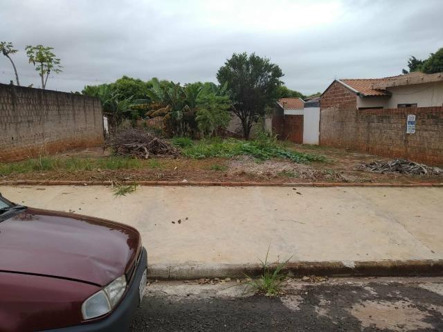 Terreno grande(490m²), com escritura, bairro Santo Expedito em JALES SP - Foto 3