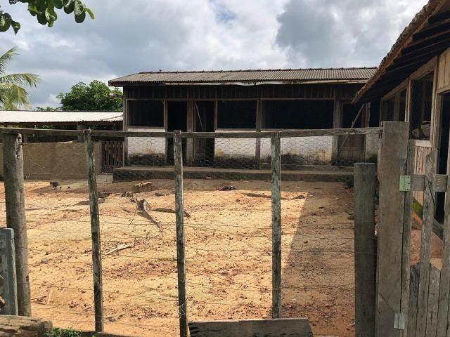 Vendo fazenda 300 alqueires (Margeando o Asfalto) - Foto 12