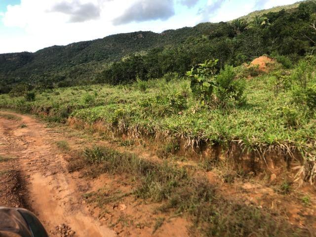 120 alqueires, pecuária e parte lavoura Bom Jardim-MT - Foto 9