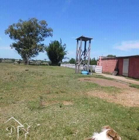 Sítio à venda com 2 dormitórios em Zona rural, Jaguarão cod:10164 - Foto 11