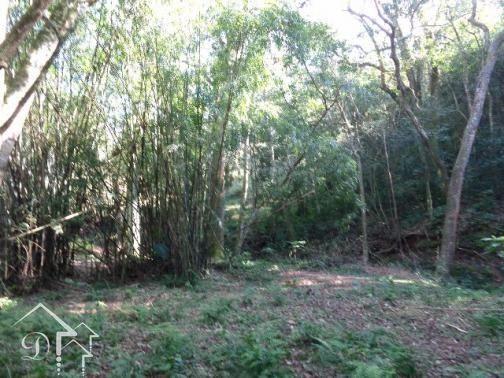 Chácara à venda em Zona rural, Santa maria cod:10004 - Foto 3