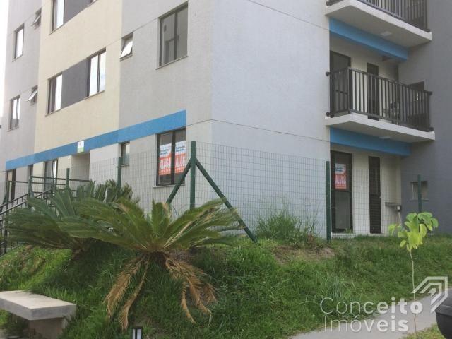 Apartamento para alugar com 1 dormitórios em Jardim carvalho, Ponta grossa cod:393113.001 - Foto 6