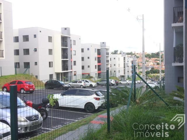 Apartamento para alugar com 1 dormitórios em Jardim carvalho, Ponta grossa cod:393113.001 - Foto 16