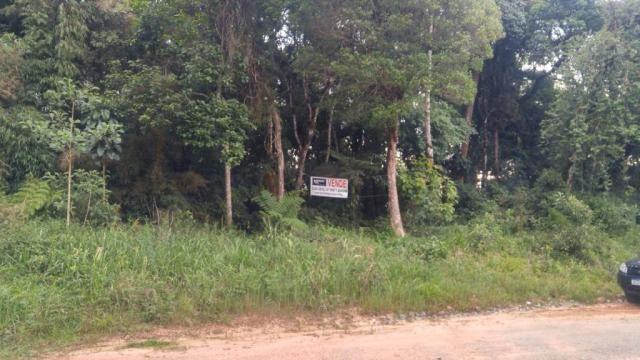 Chácara à venda em Borda do campo, São josé dos pinhais cod:69291 - Foto 10
