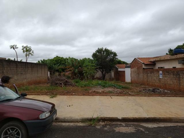 Terreno grande(490m²), com escritura, bairro Santo Expedito em JALES SP - Foto 4