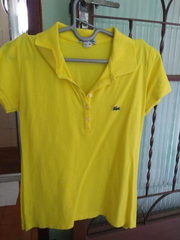 Camisa polo Lacoste original (38)(M) - Roupas e calçados - Boa Vista ... c33de79d21