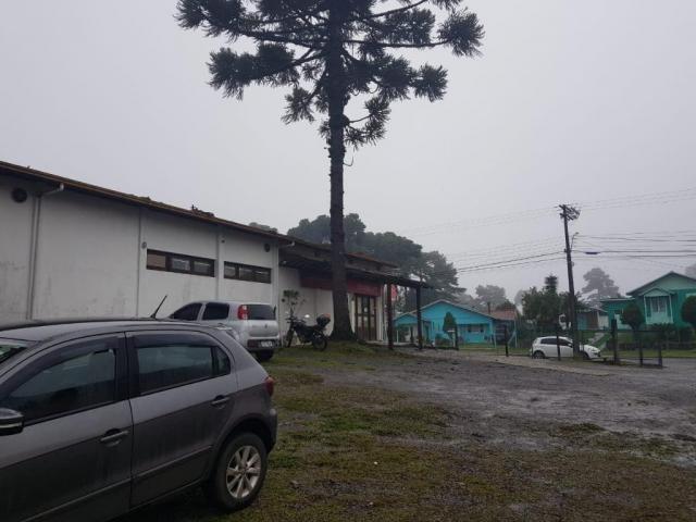 Pavilhão à venda, 627 m² por r$ 1.915.000,00 - são lucas - canela/rs - Foto 4