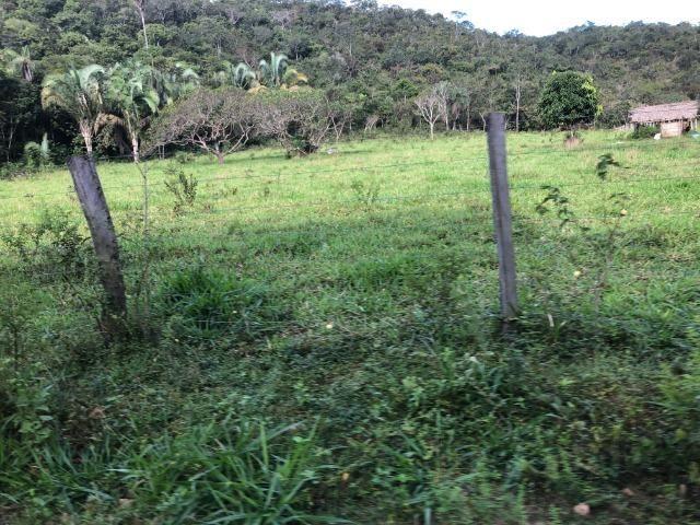 290 Hectares, Bom Jardim-MT, pecuária e lavoura, Oportunidade - Foto 5