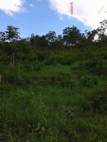Chácara à venda, 24400 m² por R$ 115.000,00 - Zona Rural - Pirenópolis/GO - Foto 3