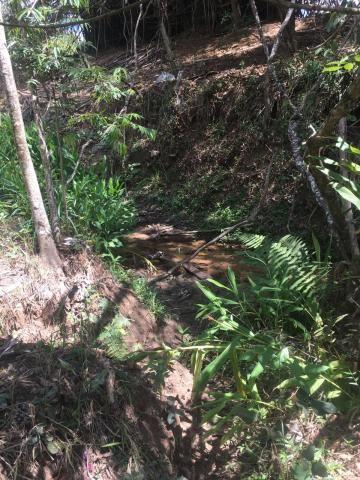 Sítio à venda em Zona rural, Cajuru cod:V14948 - Foto 6