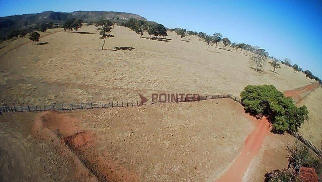 Fazenda à venda, 5614400 m² por R$ 15.000.000,00 - Zona Rural - Cachoeira Alta/GO - Foto 18