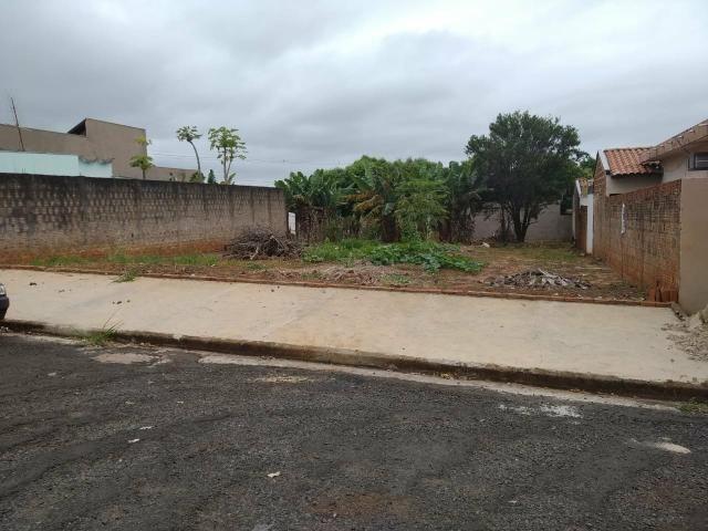 Terreno grande(490m²), com escritura, bairro Santo Expedito em JALES SP - Foto 5