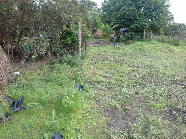 Vendo 2 Terrenos em Salinópolis-PA - Foto 3
