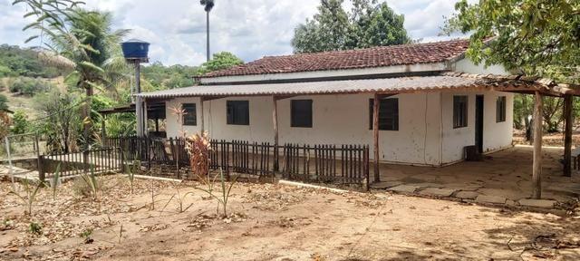 Fazenda Engenho Santa Rita 13 Alqueires