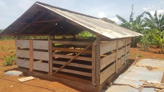 Vendo Chácara de porteira fechada em Planaltina GO , ou troco por Imóvel no DF - Foto 4