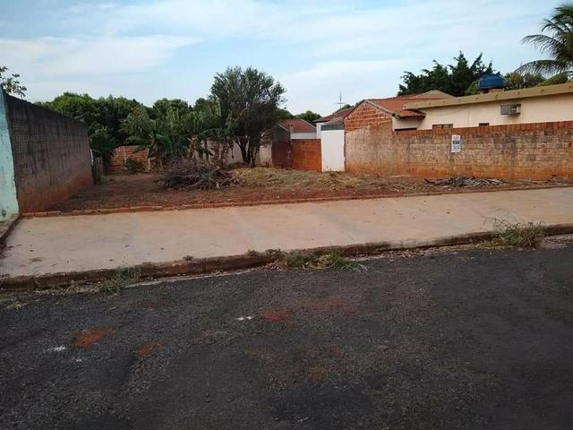 Terreno grande(490m²), com escritura, bairro Santo Expedito em JALES SP - Foto 2