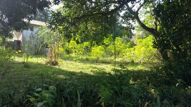 Lindo sítio em Guapimirim - Limoeiro oportunidade!!! - Foto 7