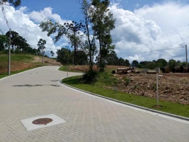 Terreno à venda, 596 m² por r$ 297.234,05 - prinstrop - gramado/rs - Foto 6