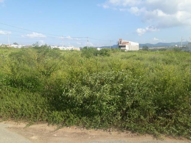 Terreno para venda em caruaru, alto do moura