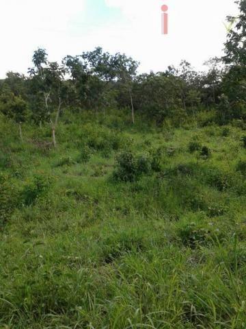 Chácara à venda, 24400 m² por R$ 115.000,00 - Zona Rural - Pirenópolis/GO - Foto 6