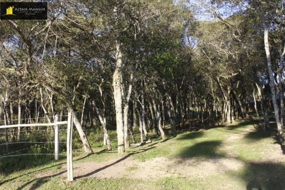 Terreno para Venda em Lagoa Tijucas do Sul-PR - Foto 2