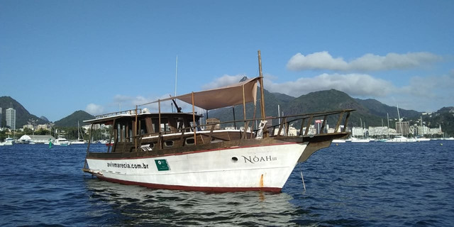 Barco Traineira 34 pés - Foto 3
