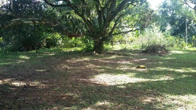 Lindo sítio em Guapimirim - Limoeiro oportunidade!!! - Foto 8