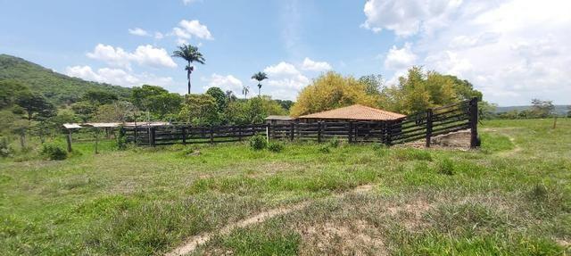 Fazenda Engenho Santa Rita 13 Alqueires - Foto 6
